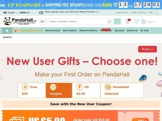 This is what the pandahall.com website looks like.